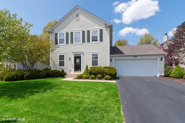 539 Valley View Drive, St. Charles, IL 60175 (MLS #11117439) :: The Spaniak Team