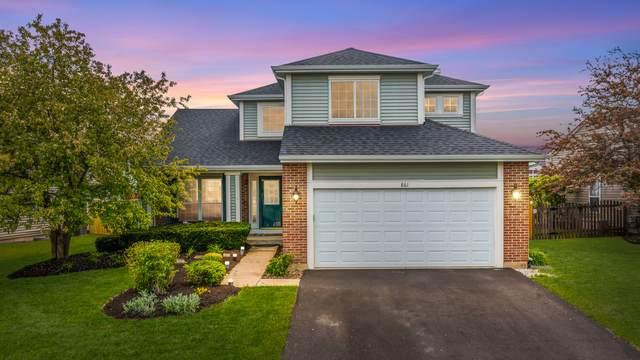 861 Tallgrass Drive, Bartlett, IL 60103 (MLS #11117578) :: BN Homes Group