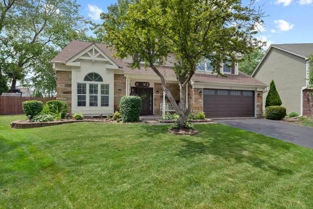 465 Meadow Lakes Boulevard, Aurora, IL 60504 (MLS #11117602) :: Ryan Dallas Real Estate