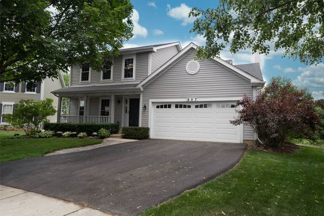 907 Joan Court, Naperville, IL 60540 (MLS #11117697) :: Carolyn and Hillary Homes