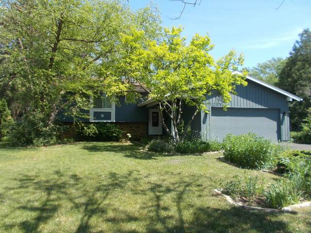 1209 N Pepper Tree Drive, Palatine, IL 60067 (MLS #11117819) :: Touchstone Group