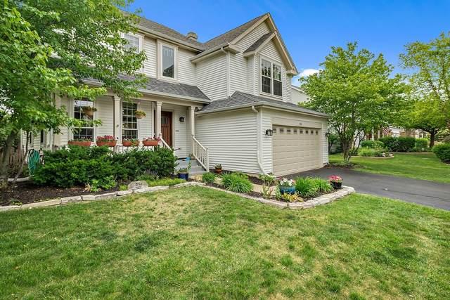 304 Wildberry Lane, Bartlett, IL 60103 (MLS #11117845) :: O'Neil Property Group