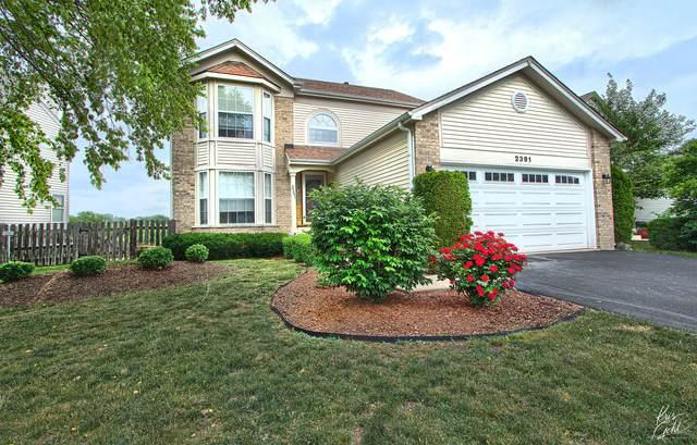 2391 N Periwinkle Way, Round Lake Beach, IL 60073 (MLS #11118210) :: O'Neil Property Group