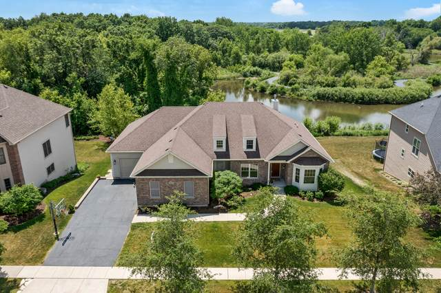 3605 Wetlands Drive, Elgin, IL 60124 (MLS #11118256) :: BN Homes Group