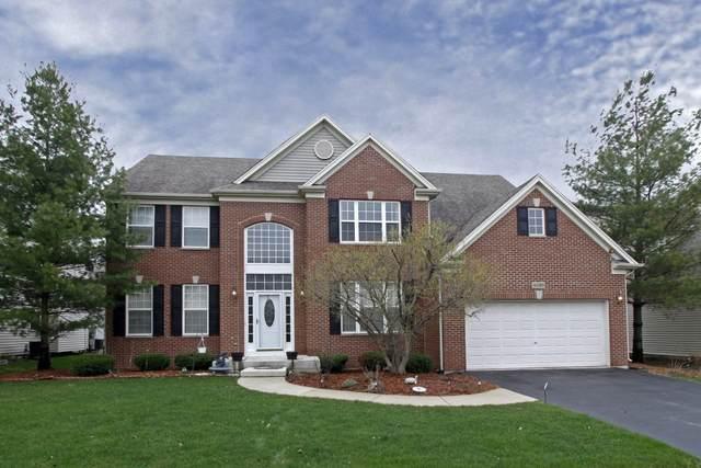 6085 Irene Drive, Hoffman Estates, IL 60192 (MLS #11118311) :: O'Neil Property Group