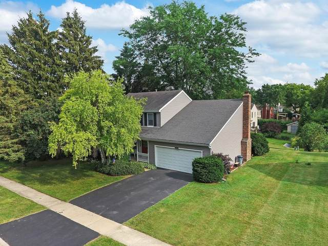 5011 Adele Drive, Gurnee, IL 60031 (MLS #11118559) :: O'Neil Property Group