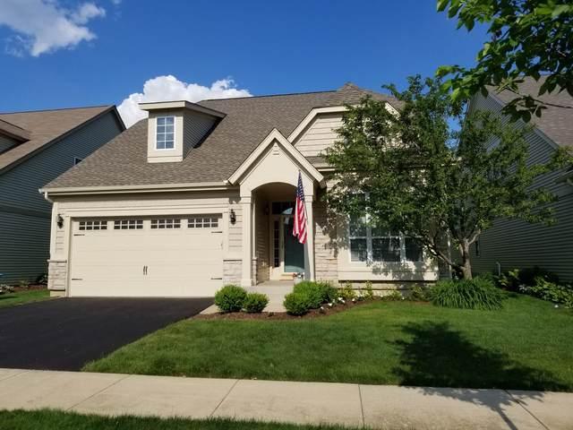 1159 Kingsley Lane, Aurora, IL 60505 (MLS #11118686) :: Jacqui Miller Homes