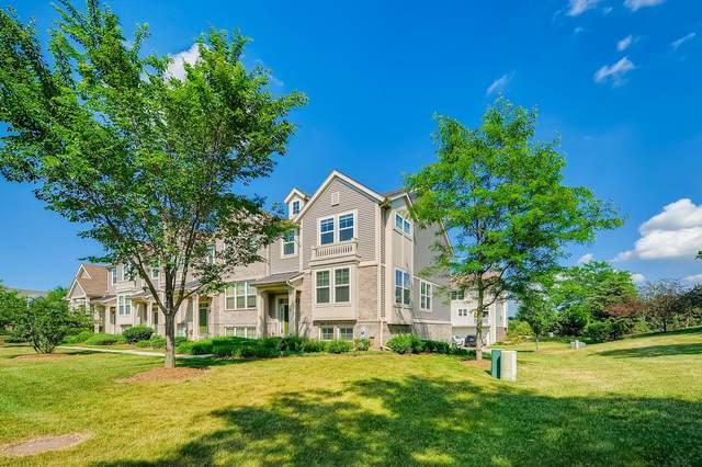 21 Veneto Court, Streamwood, IL 60107 (MLS #11118810) :: Ryan Dallas Real Estate