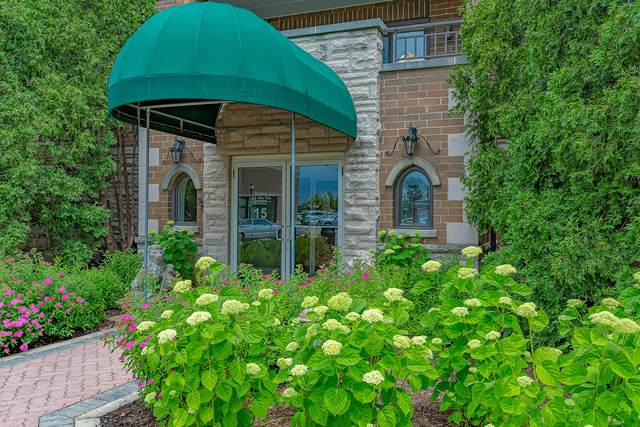 15 S Pine Street 301A, Mount Prospect, IL 60056 (MLS #11119058) :: Touchstone Group