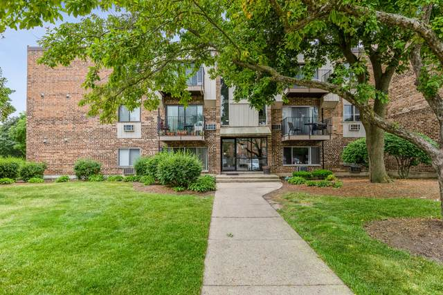 1451 N Winslowe Drive #303, Palatine, IL 60074 (MLS #11119136) :: BN Homes Group