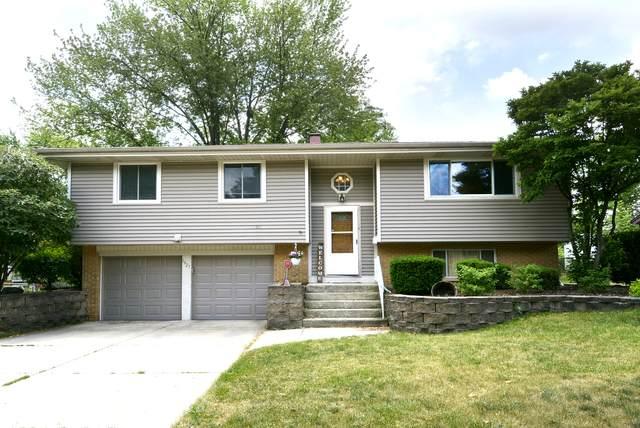 1427 Chatham Lane, Schaumburg, IL 60193 (MLS #11119211) :: Ryan Dallas Real Estate