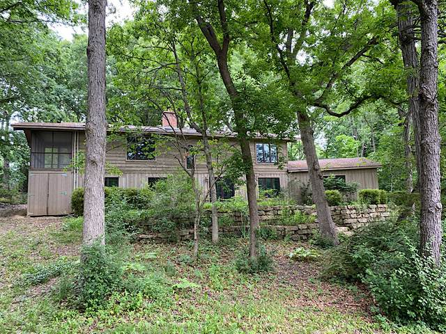 22076 W Chestnut Ridge Road, Kildeer, IL 60047 (MLS #11119277) :: O'Neil Property Group