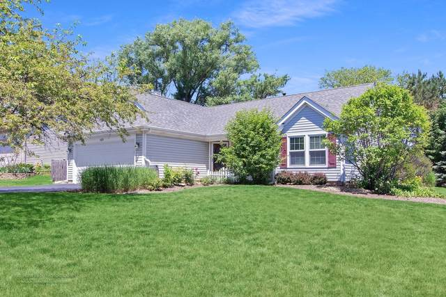 589 Shaker Lane, Lake Zurich, IL 60047 (MLS #11119314) :: John Lyons Real Estate