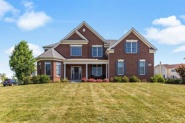 43 Shenandoah Circle, South Barrington, IL 60010 (MLS #11119402) :: O'Neil Property Group