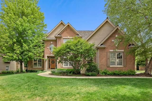 702 Ashton Lane, South Elgin, IL 60177 (MLS #11119493) :: BN Homes Group