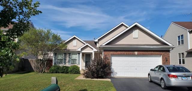 462 Grape Vine Trail, Oswego, IL 60543 (MLS #11119648) :: Littlefield Group