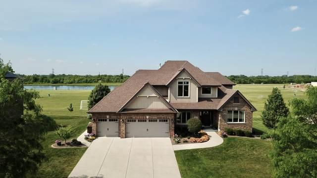 1735 Brogan Drive, New Lenox, IL 60451 (MLS #11119694) :: The Dena Furlow Team - Keller Williams Realty