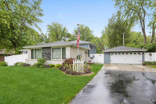 232 Central Road, New Lenox, IL 60451 (MLS #11120119) :: Littlefield Group