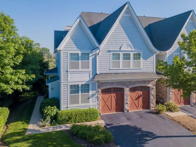 21907 W Talia Lane, Deer Park, IL 60010 (MLS #11120186) :: Ryan Dallas Real Estate