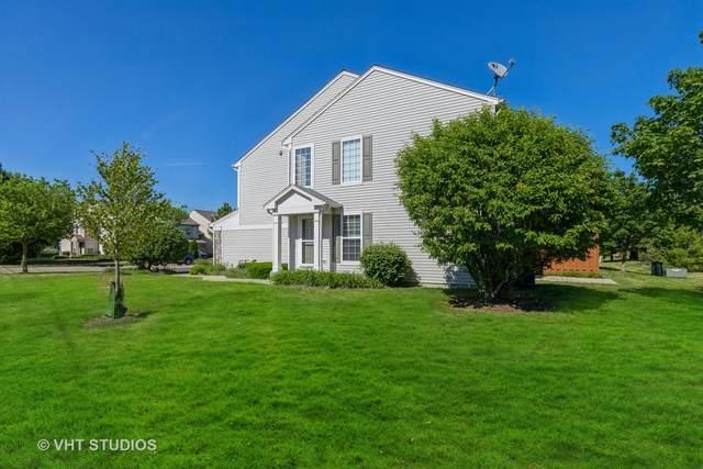 187 W Buckingham Drive, Round Lake, IL 60073 (MLS #11120323) :: Ryan Dallas Real Estate