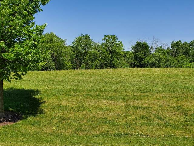 LOT 11 W Concord Court, Wadsworth, IL 60083 (MLS #11120578) :: BN Homes Group