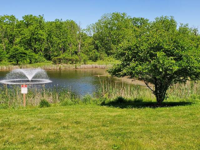 Lot 12 W Concord Court, Wadsworth, IL 60083 (MLS #11120584) :: BN Homes Group