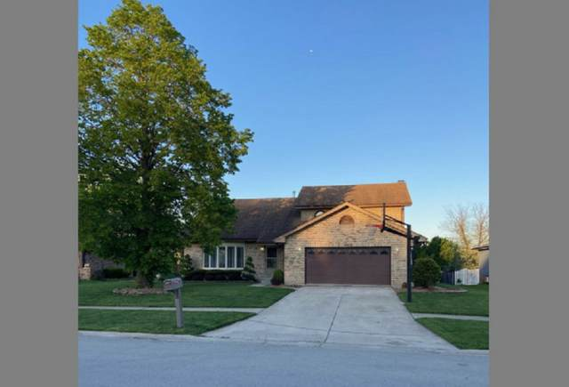 14505 S Mustang Drive, Homer Glen, IL 60491 (MLS #11120890) :: Ryan Dallas Real Estate