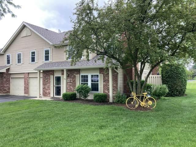 3055 Anton Circle, Aurora, IL 60504 (MLS #11120945) :: Ryan Dallas Real Estate