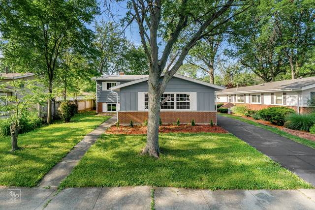 235 Indiana Street, Park Forest, IL 60466 (MLS #11120994) :: Ryan Dallas Real Estate