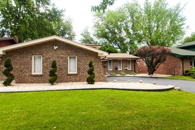4231 207th Street, Matteson, IL 60443 (MLS #11120999) :: Ryan Dallas Real Estate