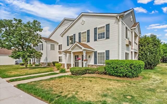 1009 Silverstone Drive #1009, Carpentersville, IL 60110 (MLS #11121137) :: BN Homes Group