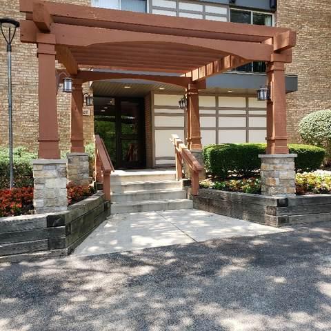 1811 Four Lakes Avenue 3D, Lisle, IL 60532 (MLS #11121147) :: The Dena Furlow Team - Keller Williams Realty