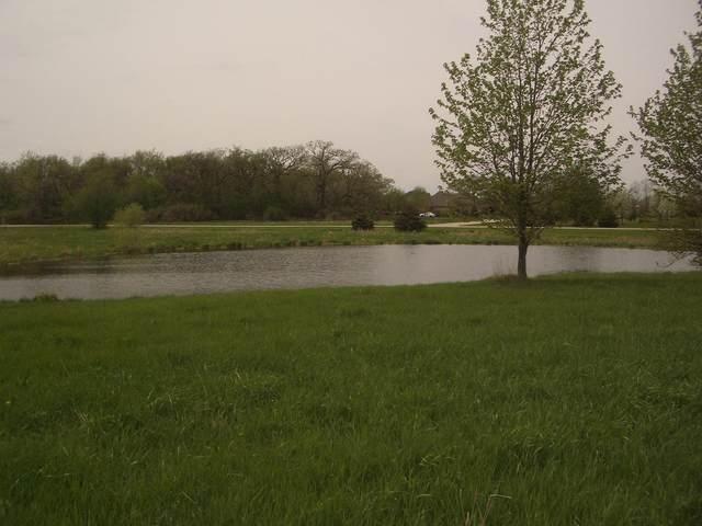 15816 Cardinal Drive, Huntley, IL 60142 (MLS #11121216) :: John Lyons Real Estate