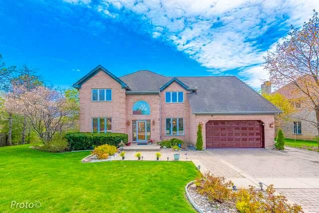 406 E Diane Drive, Palatine, IL 60074 (MLS #11121224) :: O'Neil Property Group