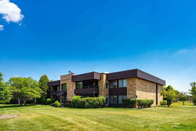 1409 N Sterling Avenue #201, Palatine, IL 60067 (MLS #11121361) :: O'Neil Property Group