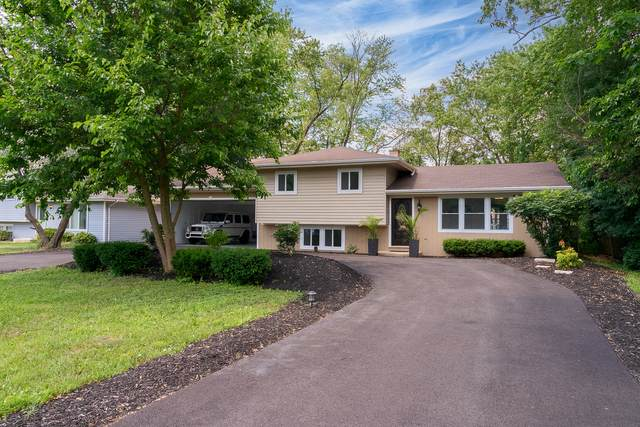 11s420 Lemont Road, Lemont, IL 60439 (MLS #11121431) :: O'Neil Property Group