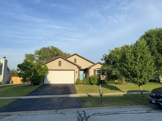 26225 S Locust Place, Monee, IL 60449 (MLS #11121432) :: O'Neil Property Group