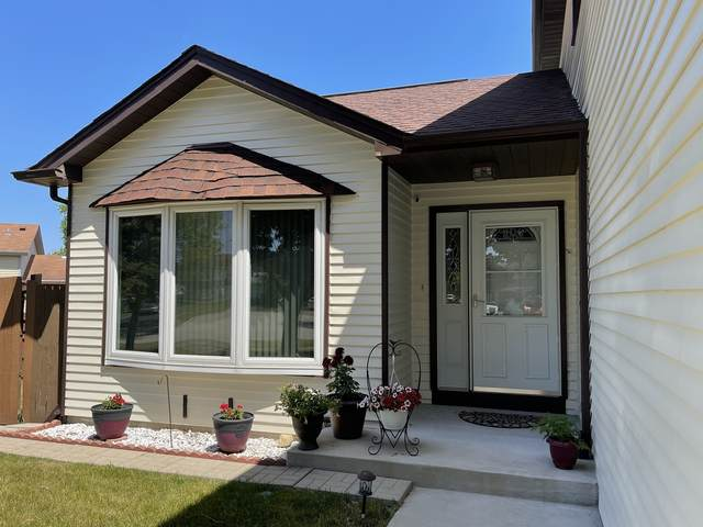 399 Woodhollow Lane, Bartlett, IL 60103 (MLS #11121612) :: Ryan Dallas Real Estate
