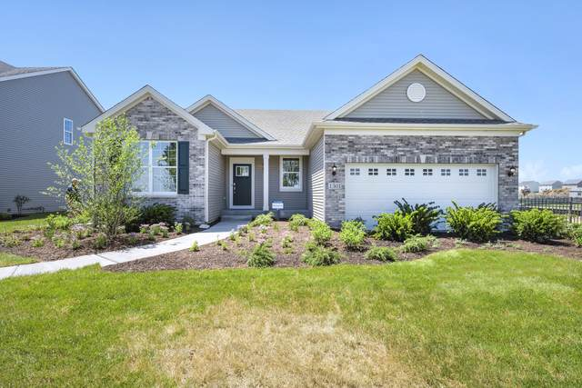 1301 Barberry Way, Joliet, IL 60431 (MLS #11121619) :: Touchstone Group