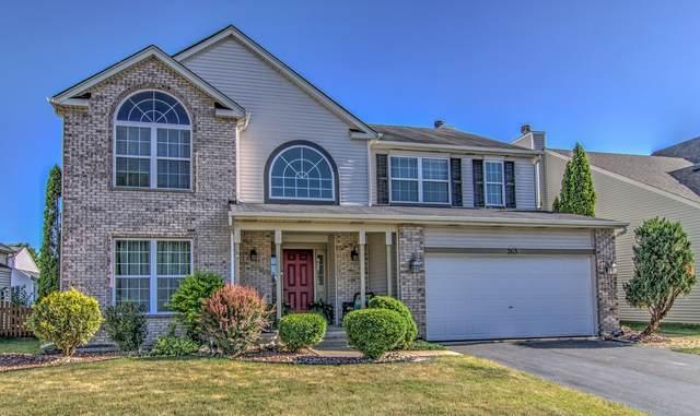 263 Gladiolus Drive, Romeoville, IL 60446 (MLS #11121767) :: O'Neil Property Group