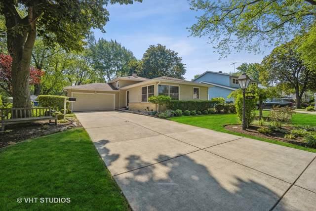 1131 E Juniper Lane, Mount Prospect, IL 60056 (MLS #11121900) :: Touchstone Group
