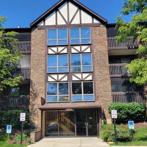 10351 Menard Avenue 3-307, Oak Lawn, IL 60453 (MLS #11121996) :: Touchstone Group