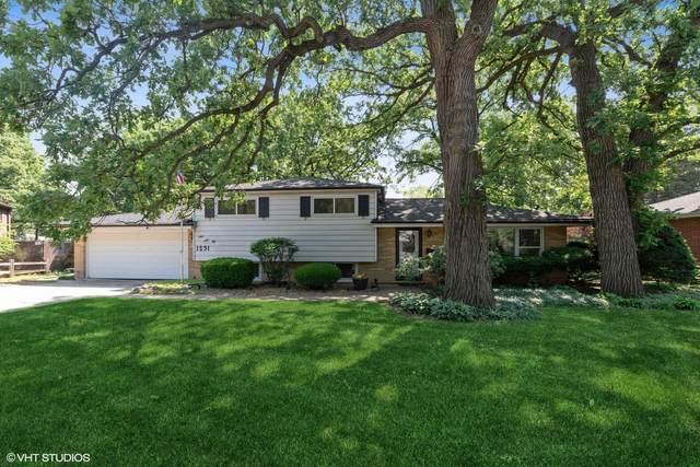 1231 Castle Drive, Glenview, IL 60025 (MLS #11122436) :: Ryan Dallas Real Estate