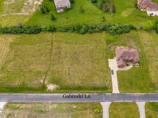 7110 W Gabreski Lane, Monee, IL 60449 (MLS #11122492) :: Suburban Life Realty
