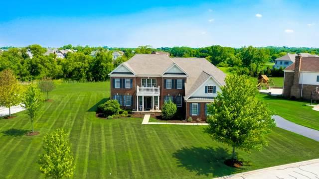 14 Briar Creek Drive, Hawthorn Woods, IL 60047 (MLS #11122673) :: Suburban Life Realty