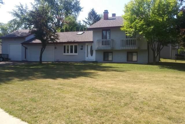 5313 W Shore Drive, Mchenry, IL 60050 (MLS #11122744) :: Lewke Partners