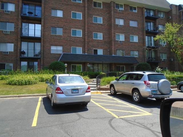 4711 Saint Joseph Creek Road 1E, Lisle, IL 60532 (MLS #11122814) :: The Dena Furlow Team - Keller Williams Realty