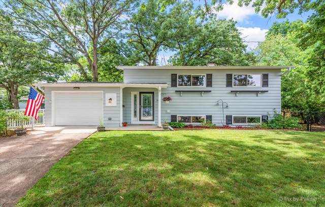 26 Big Oaks Court, Streamwood, IL 60107 (MLS #11122861) :: Suburban Life Realty