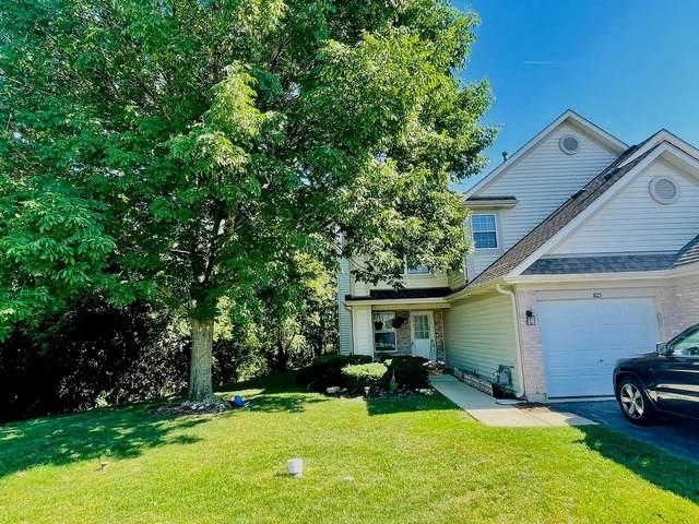 1823 Grove Avenue, Schaumburg, IL 60193 (MLS #11122985) :: The Dena Furlow Team - Keller Williams Realty