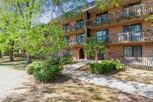 444 Redondo Drive #103, Downers Grove, IL 60516 (MLS #11123073) :: John Lyons Real Estate